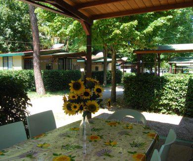 Camping-Panorama-Pesaro-Foto-5